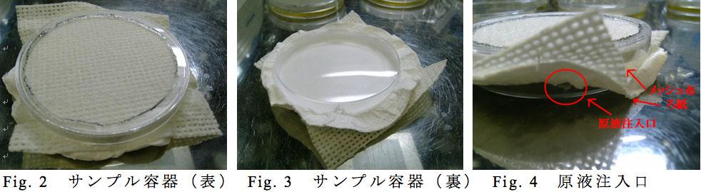 fig2_4.jpg